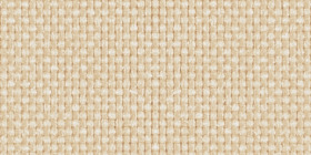 beige_fabric_thumbnail